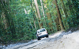 Fraser Experience 4wd Group Tour