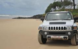 Fraser Island Hummer and Whale Experience